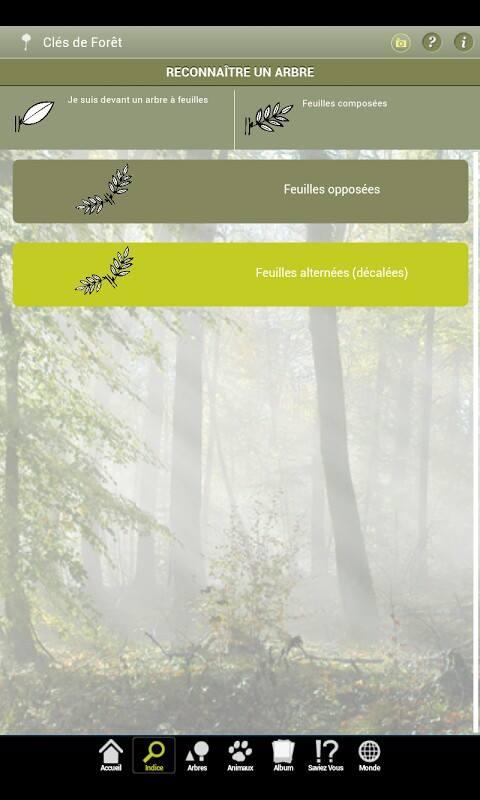 application clés de forêt