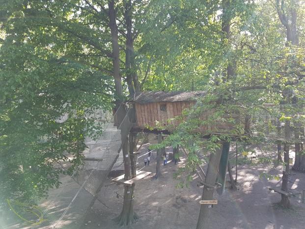 L'accrobranche au Sherwood Parc : une activité nature pour toute la famille